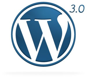 wordpress3.01